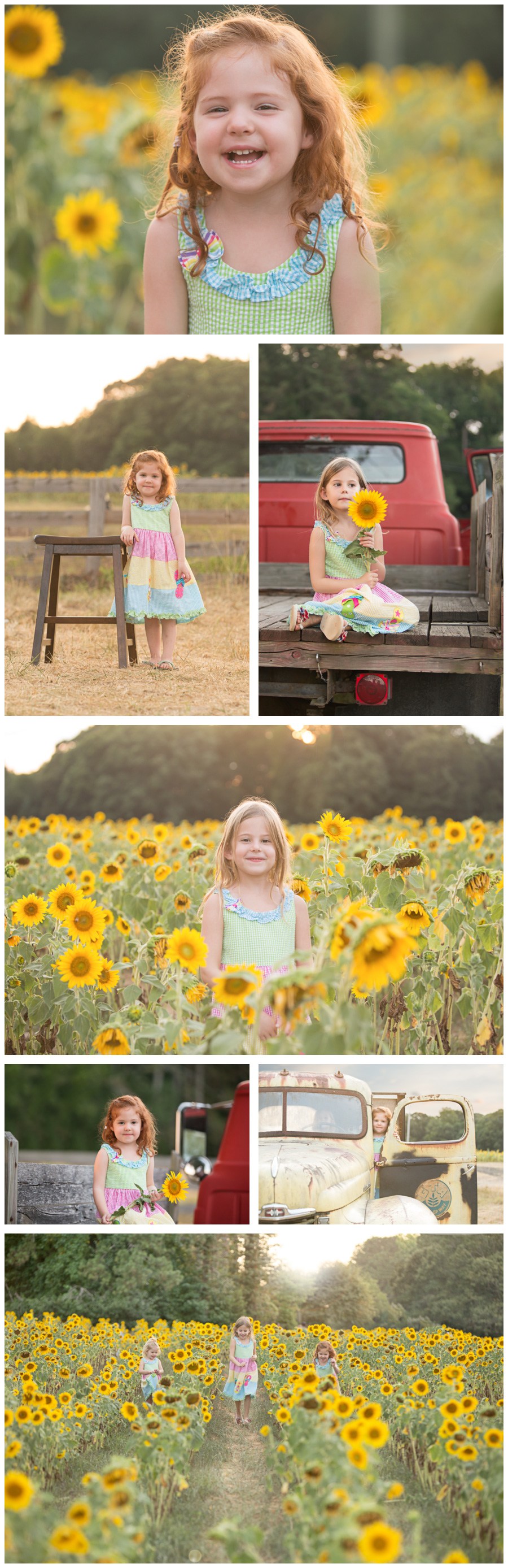 Bright, Beautiful Sunflower Sessions in Cumming, Georgia