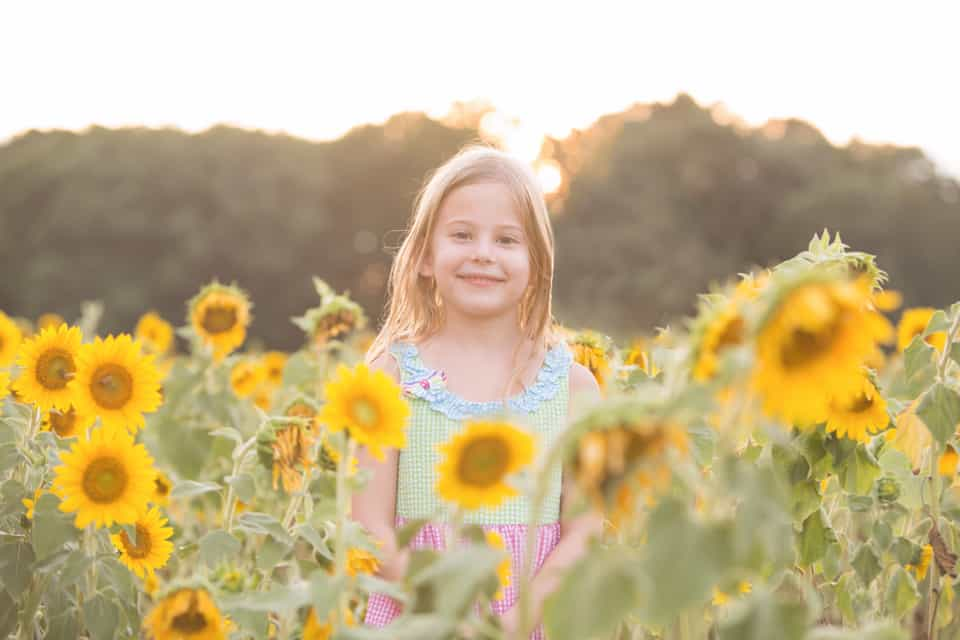 Bright, Beautiful Sunflowers – Family Session