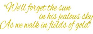 Suwanee Georgia Fields - walk in fields of gold