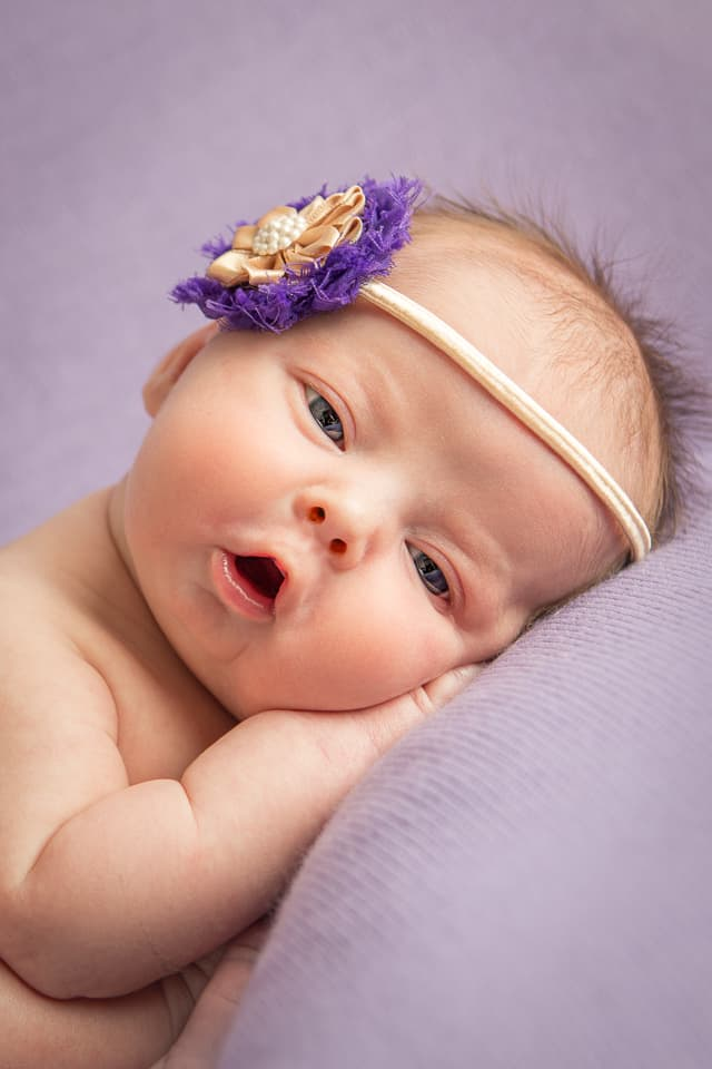 Eyes open newborn portrait of newborn baby girl in purples. Photo by Colleen Hight Photography.