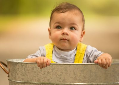 Outdoor Milestone Portraits for a one year old birthday by Colleen Hight Photography
